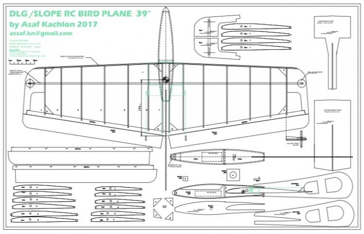 "39"" DLG R\C GLIDER model airplane plan"