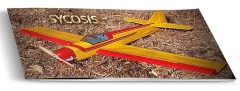 Sycosis model airplane plan