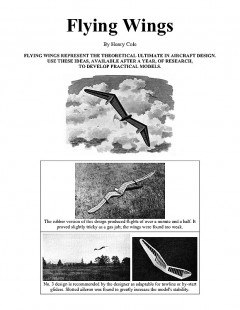 Flying Wings (with article) model airplane plan