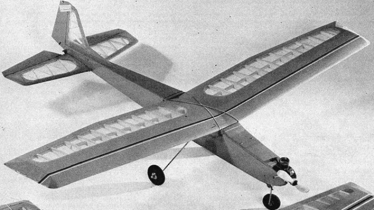 Evolution model airplane plan