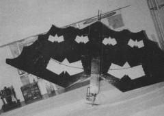 Flying Bat model airplane plan