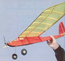 Food Wrap 2000 model airplane plan