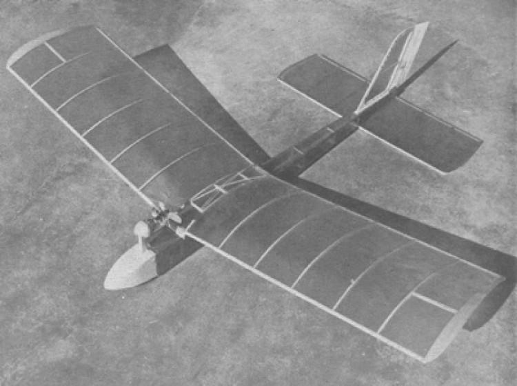 Gym Dandy model airplane plan