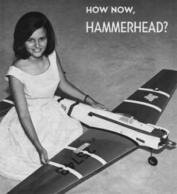 Hammerhead model airplane plan
