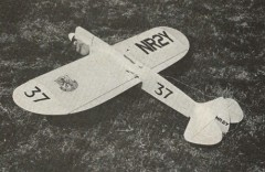 Project Profile model airplane plan