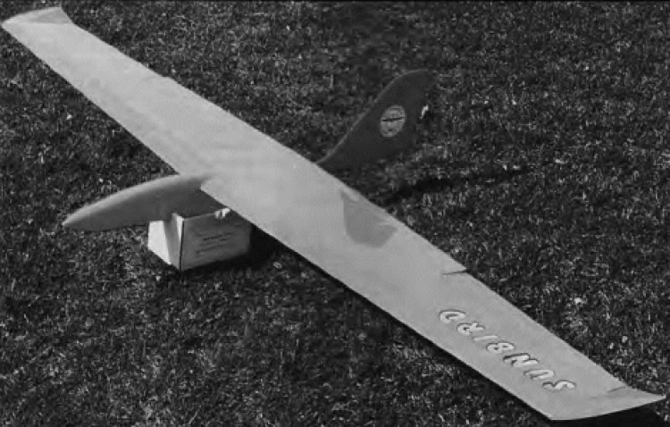 Sunbird model airplane plan