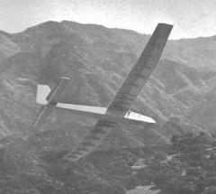 Super Turkey model airplane plan