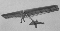 Swingwing model airplane plan