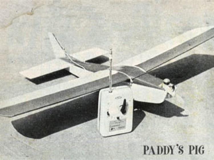 Paddys Pig model airplane plan