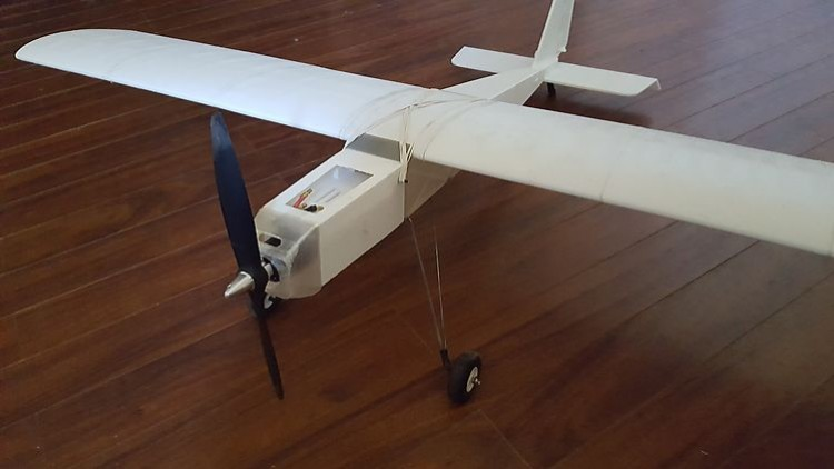 """3d Printed """"Ugly""""Stick model airplane plan"""