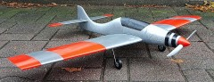 Piranha model airplane plan