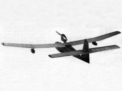 Swan Song model airplane plan