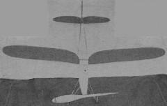 Gull model airplane plan