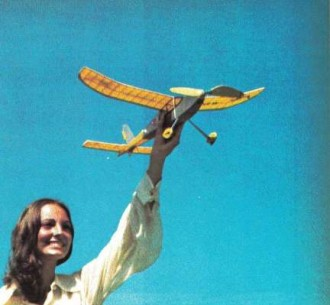 Curlew model airplane plan