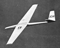 Peregrine model airplane plan