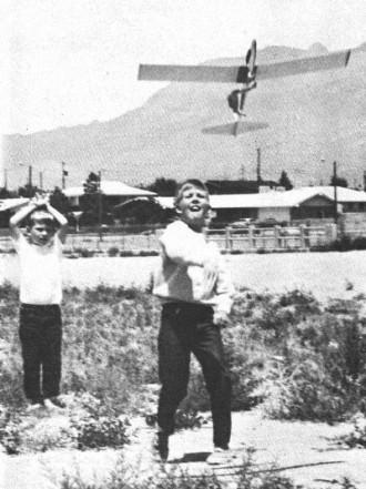 Schweizer 1-29 model airplane plan
