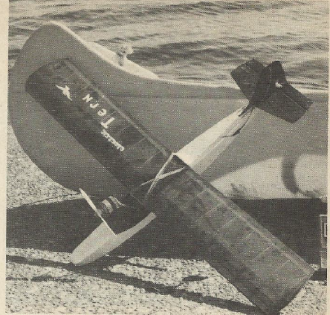 Electric Tern model airplane plan