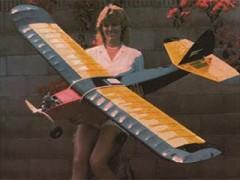 Paypod model airplane plan