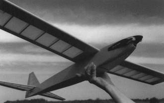 Quietus model airplane plan