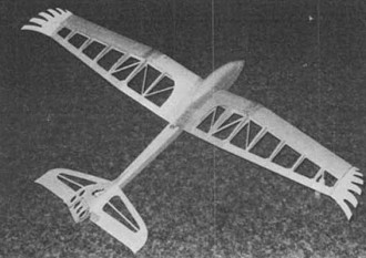 Sparrow Hawk model airplane plan