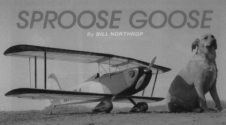 Sproose Goose model airplane plan