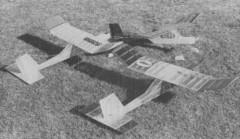 Big Bird model airplane plan