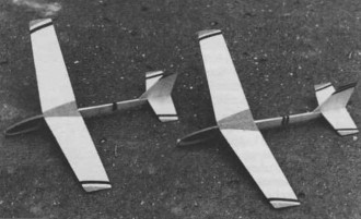 Blecha 2 model airplane plan