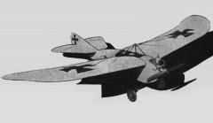 Rumpler Taube model airplane plan