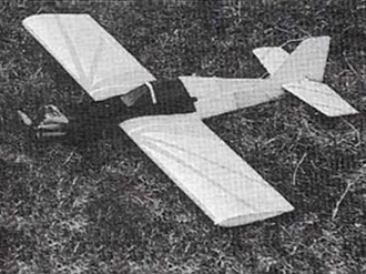 Alley Cat model airplane plan