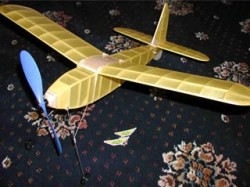 Fledgling model airplane plan