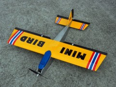 Mini Bird model airplane plan