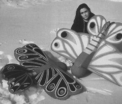 Butterfly model airplane plan