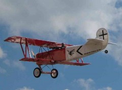 Fokker D.VII model airplane plan
