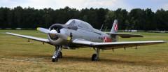 PZL TS 8 Bies model airplane plan