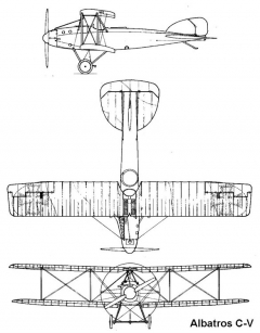 albatros c5 3v model airplane plan