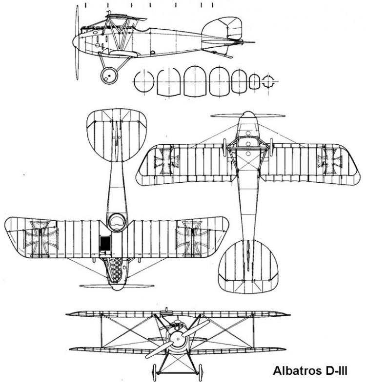 albatros d3 3v model airplane plan