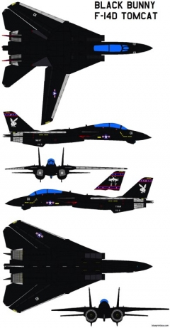 black bunny f 14d tomcat model airplane plan