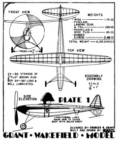 Tsetse Fly Wake p1 model airplane plan