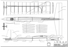Beach Bum model airplane plan