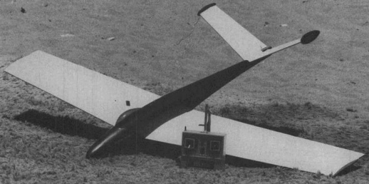 Afternoon Delite model airplane plan