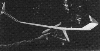 Animo model airplane plan