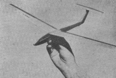 Cobra 15 model airplane plan
