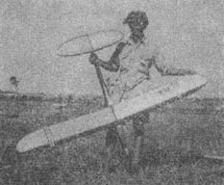 Delfin model airplane plan