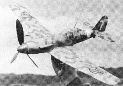 Fiat G 55 model airplane plan