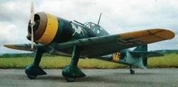 Fokker D XXI model airplane plan