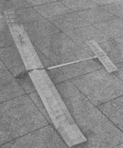 Limit model airplane plan