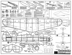 P-40 Tiger Shark model airplane plan