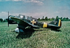 PZL P-23 Karas model airplane plan