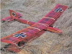 Pfalz Alarm model airplane plan