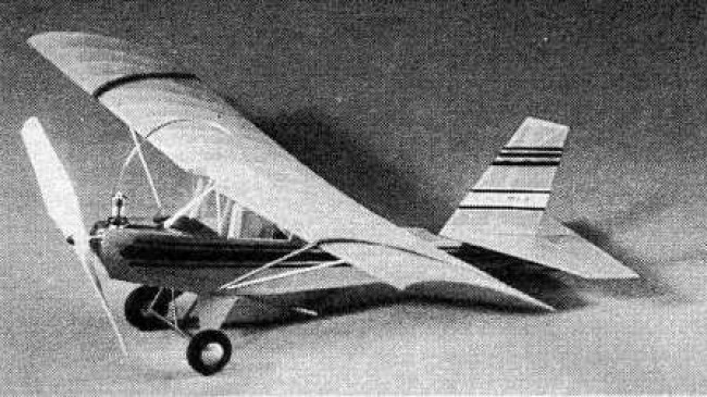 Pistacio model airplane plan